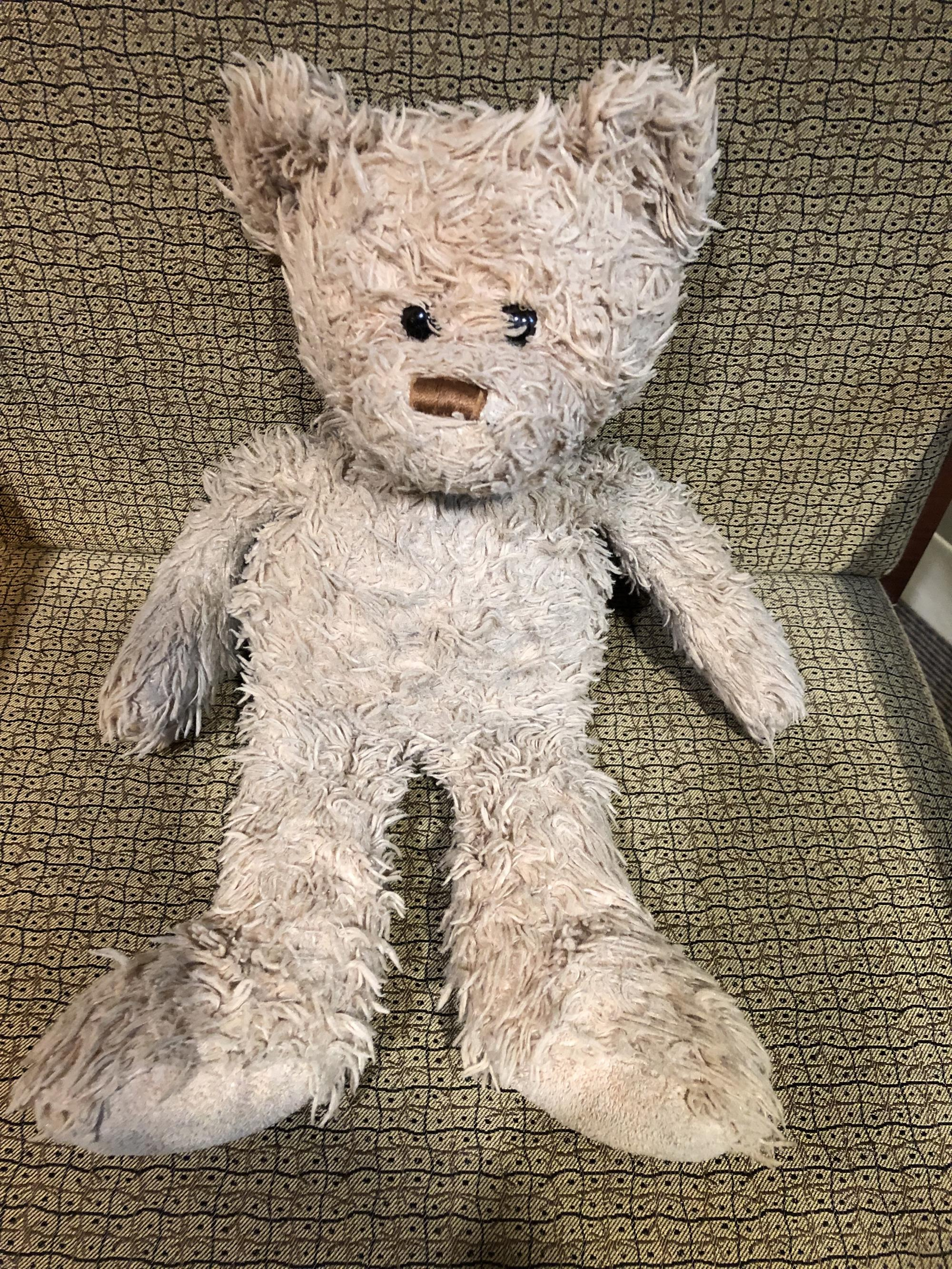 Taylorsville Dayzz Lost and Found